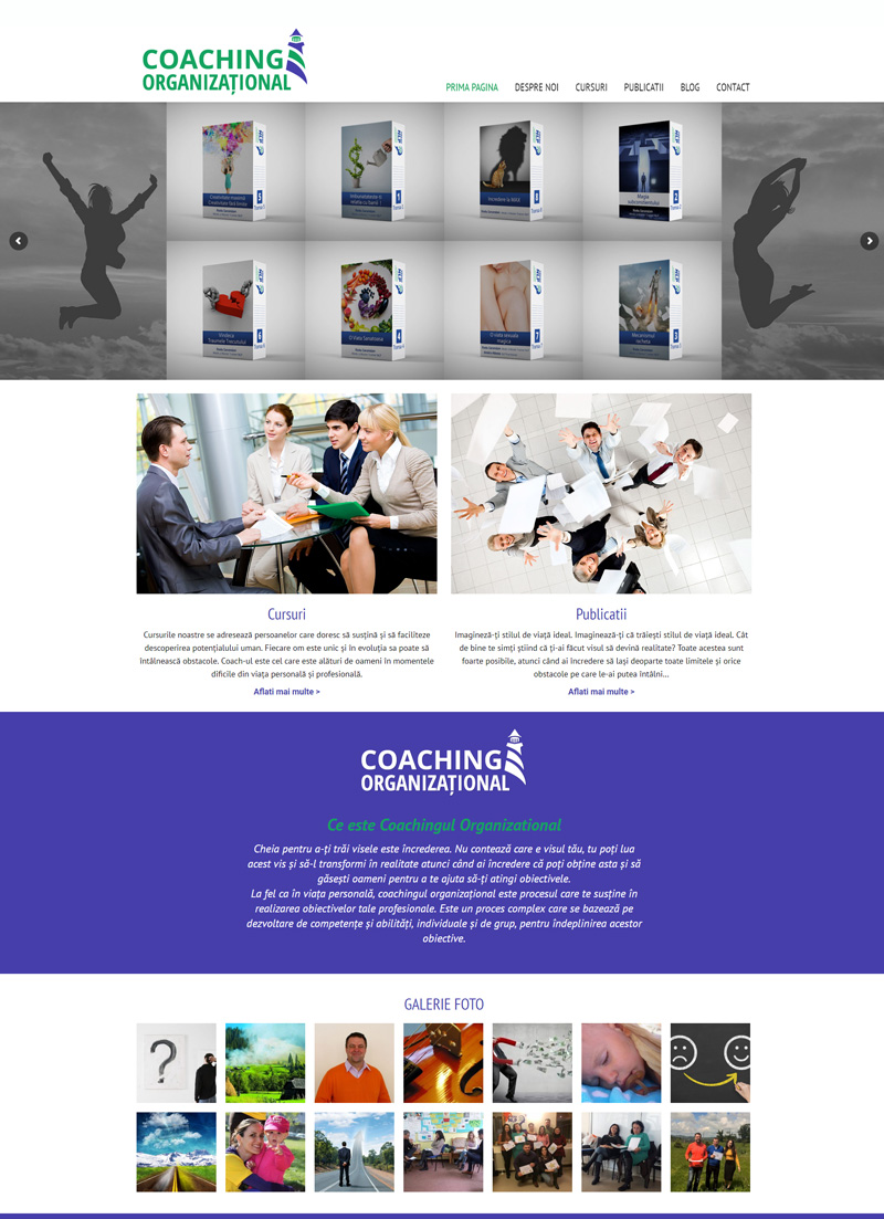 Coaching Organizational